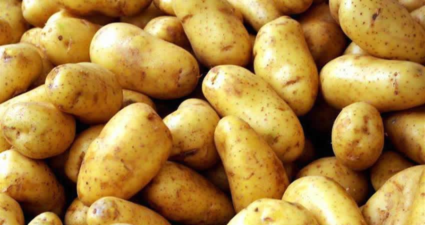 Irish Potatoes Cluster