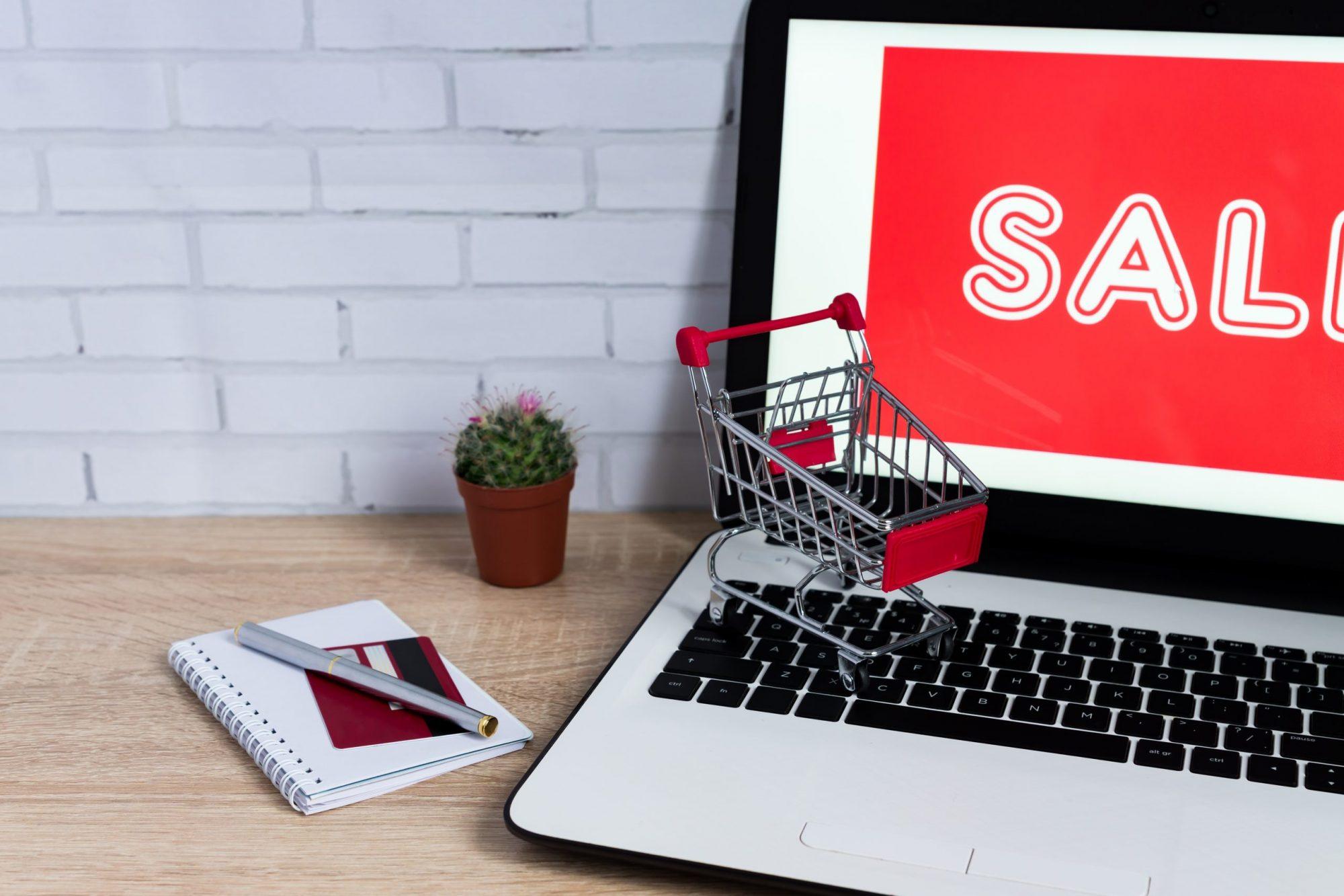 Make Money Online Using e-Commerce Website